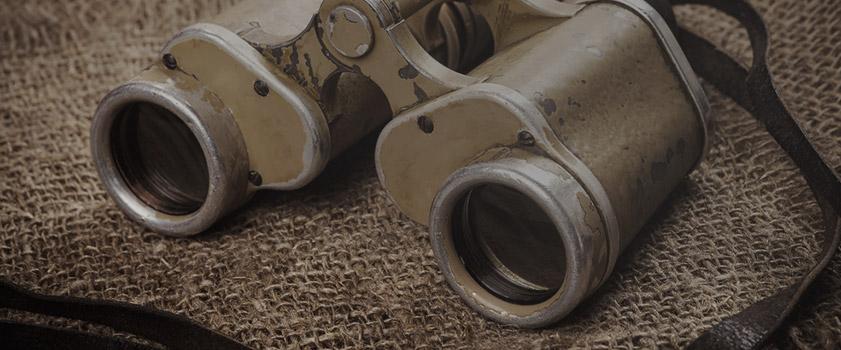 WHS_BLOG_11.2.16_Binoculars